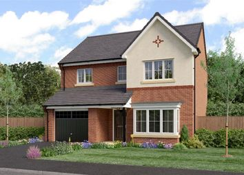 "Thumbnail 4 bedroom detached house for sale in ""The Ashbery"" at Sadberge Road, Middleton St. George, Darlington"