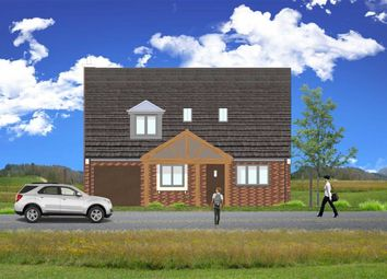 Thumbnail 4 bed detached house for sale in Abbey View Fields, Bridge End, Leek