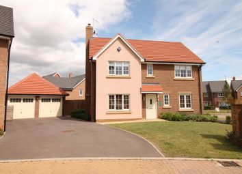 Thumbnail 4 bed detached house to rent in St Olave Close, Daventry
