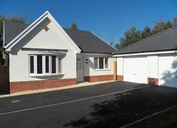 Thumbnail 3 bed detached bungalow for sale in Bolahaul Road, Cwmffrwd, Carmarthen