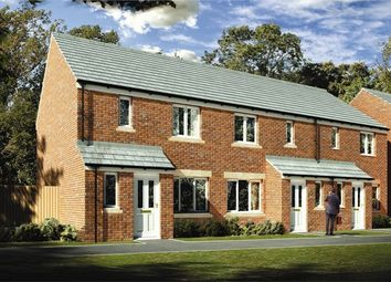 "Thumbnail 3 bedroom semi-detached house for sale in ""The Hanbury"" at Lynn Lane, Great Massingham, King's Lynn"