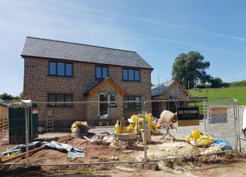 Thumbnail 4 bedroom detached house for sale in Tresseck Mill Road, Hoarwithy HR26Qj