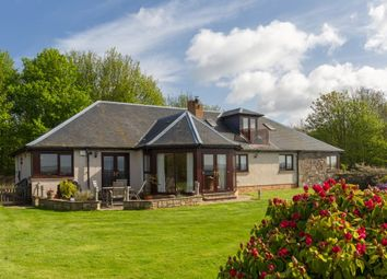 Thumbnail 4 bedroom detached bungalow for sale in Balruddery Meadows, By Fowlis, Dundee