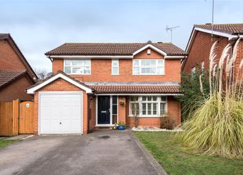 Thumbnail 4 bed detached house for sale in Woodford Green, Bracknell, Berkshire