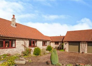 Thumbnail 3 bedroom detached bungalow for sale in Back Lane, Clifton, Rotherham