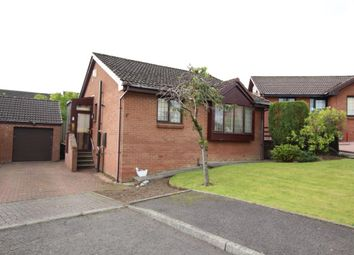 Thumbnail 2 bed bungalow for sale in George Allan Place, Strathaven