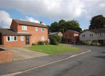 Thumbnail 6 bed detached house to rent in Cedarview, Canterbury