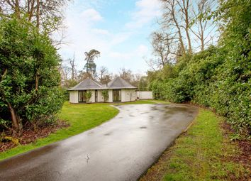 Thumbnail 3 bedroom bungalow to rent in Hedsor Park, Taplow, Maidenhead