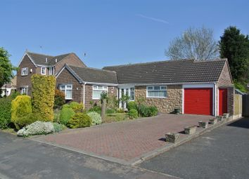 Thumbnail 3 bed detached bungalow for sale in Sywell Drive, Wigston