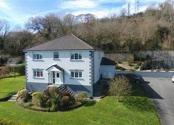 Thumbnail 4 bed detached house for sale in Heol Y Delyn, Carmarthen
