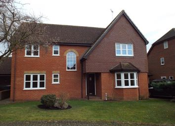 Thumbnail 5 bed property to rent in Mathews Close, Stevenage