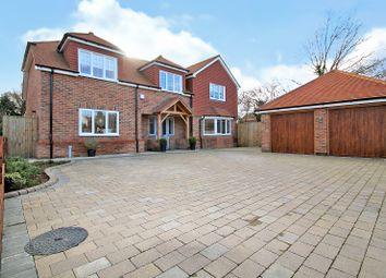 Thumbnail 4 bed detached house for sale in Ilex Close, Northiam, Rye