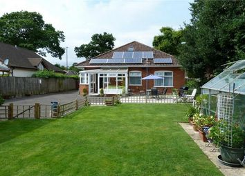 Thumbnail 4 bedroom detached bungalow for sale in The Grove, Christchurch, Dorset
