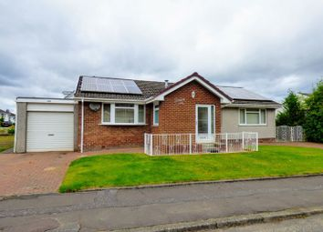 Thumbnail 3 bed detached bungalow for sale in St. Lukes Avenue, Carluke