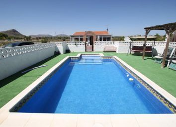 Thumbnail 4 bed finca for sale in Crevillente Valencia, Crevillente, Valencia