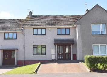 Thumbnail 3 bed terraced house to rent in Montreal Park Westwood East Kilbride, East Kilbride