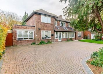 Thumbnail 8 bed detached house for sale in Queen Ediths Way, Cherry Hinton, Cambridge