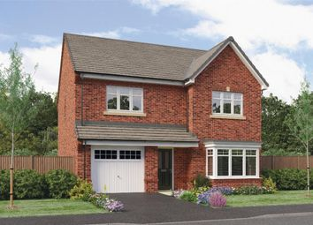 "Thumbnail 4 bed detached house for sale in ""Ryton"" at Ruby Lane, Mosborough, Sheffield"