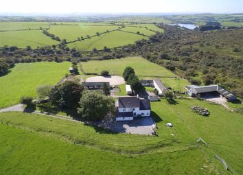 Thumbnail Farm for sale in Common Moor, Liskeard, Cornwall