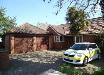 Thumbnail 3 bedroom bungalow to rent in Avocet Close, East Road, West Mersea, Colchester, Essex