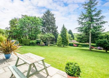 Thumbnail 4 bedroom detached bungalow for sale in Lady Meadow, Kings Langley
