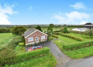 Thumbnail 3 bed bungalow for sale in Halstock, Yeovil, Somerset