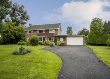 Thumbnail 4 bed detached house for sale in Hither Chantlers, Langton Green, Tunbridge Wells, Kent