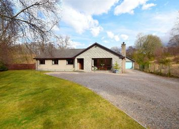 Thumbnail 4 bed detached bungalow for sale in Grantown-On-Spey