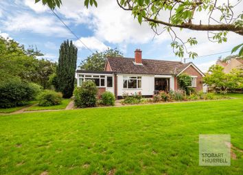 Thumbnail 4 bed detached bungalow for sale in South Walsham Road, Panxworth, Norfolk