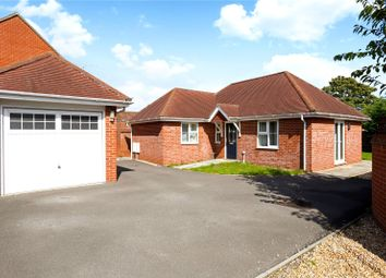Thumbnail 2 bed detached bungalow for sale in Inhams Road, Holybourne, Alton, Hampshire