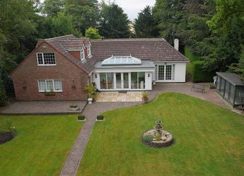 Thumbnail 5 bed detached bungalow to rent in Scothern Lane, Sudbrooke, Lincoln