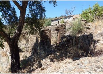 Thumbnail Land for sale in Cf365, Sitio Da Aporfiosa, Portugal