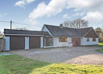 Thumbnail 3 bed bungalow for sale in Ropley, Alresford, Hampshire