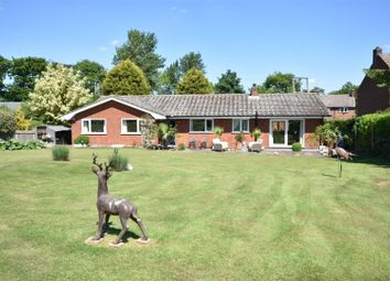 Thumbnail 3 bed detached bungalow for sale in School Lane, East Stoke, Newark