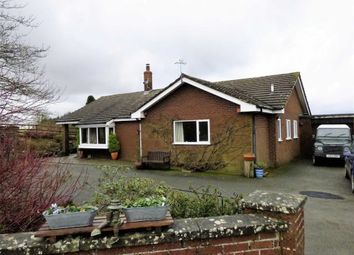 Thumbnail 2 bed detached bungalow for sale in Trelystan, Leighton, Welshpool