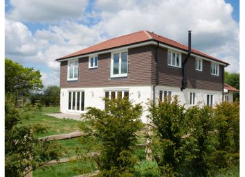 Thumbnail 4 bed detached house to rent in Nutbourne Lane, Pulborough