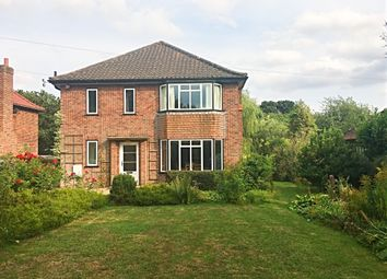 Thumbnail 3 bed detached house for sale in High Green, Brooke, Norwich