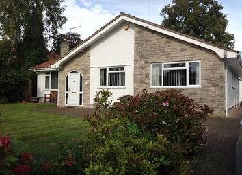 Thumbnail 3 bed bungalow to rent in Pringles Close, Ferndown