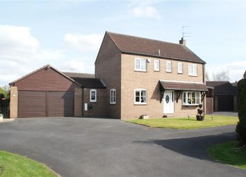 Thumbnail 4 bedroom detached house for sale in Cyprus Grove, Haxby, York