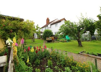 Thumbnail 2 bed semi-detached house for sale in Church Road, Eastchurch, Sheerness