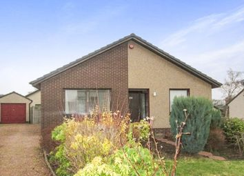 Thumbnail 3 bed bungalow to rent in Watts Gardens, Cupar