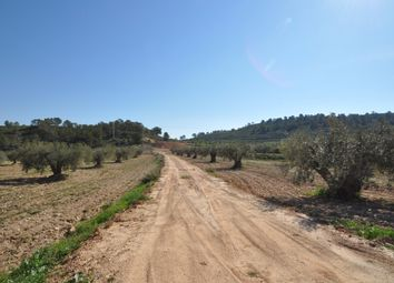 Thumbnail Land for sale in 30529 La Zarza, Murcia, Spain