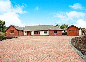 Thumbnail 4 bed bungalow for sale in Valleyfield Meadow, Terregles, Dumfries