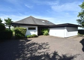 Thumbnail 4 bed bungalow for sale in Main Road, Easter Compton, Bristol
