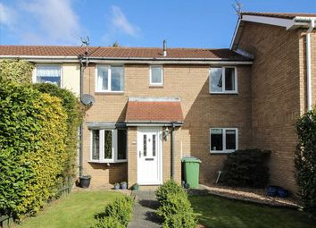 Thumbnail 2 bed terraced house to rent in Humsford Grove, Eastfield Glade, Cramlington