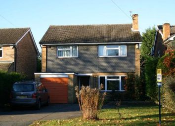 Thumbnail 4 bed detached house to rent in The Spinney, Beaconsfield