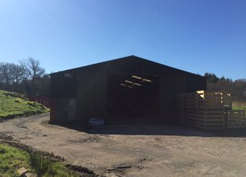Thumbnail Warehouse to let in Carbeth Guthrie, Stockiemuir Road, Blanefield