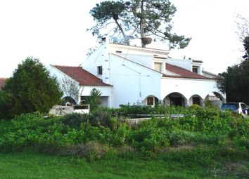 Thumbnail 4 bed villa for sale in Center, Benavente, Santarém, Central Portugal