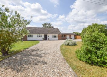 Thumbnail 6 bedroom detached bungalow for sale in Kennett, Newmarket