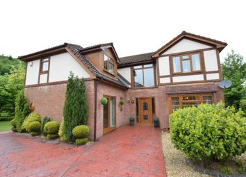Thumbnail 4 bedroom detached house for sale in St. Davids Park, New Tredegar